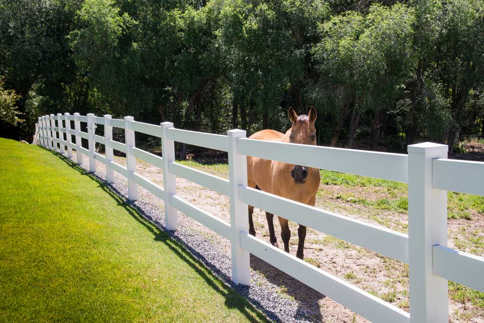 3 Rail Ranch Vinyl Fence